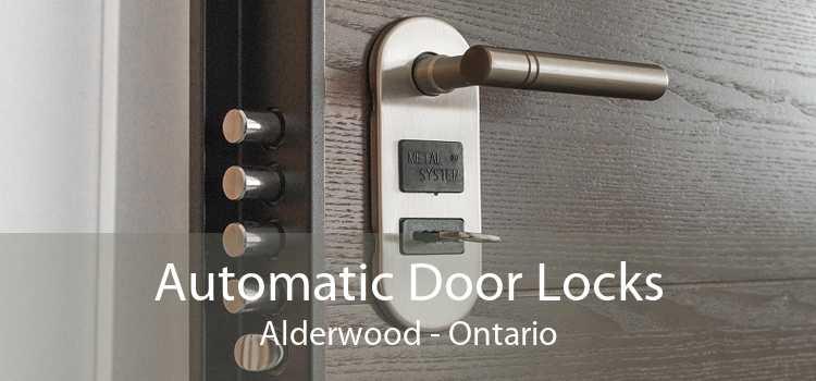 Automatic Door Locks Alderwood - Ontario