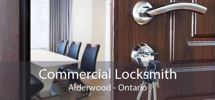 Commercial Locksmith Alderwood - Ontario