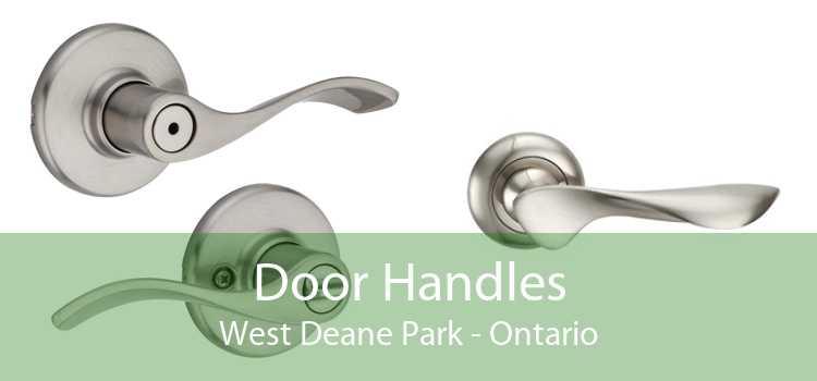 Door Handles West Deane Park - Ontario