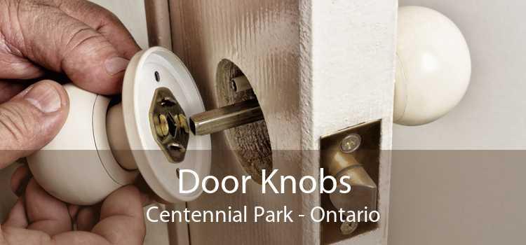 Door Knobs Centennial Park - Ontario