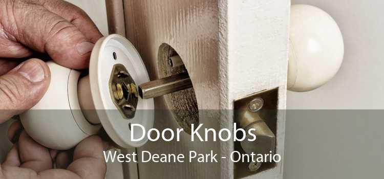 Door Knobs West Deane Park - Ontario