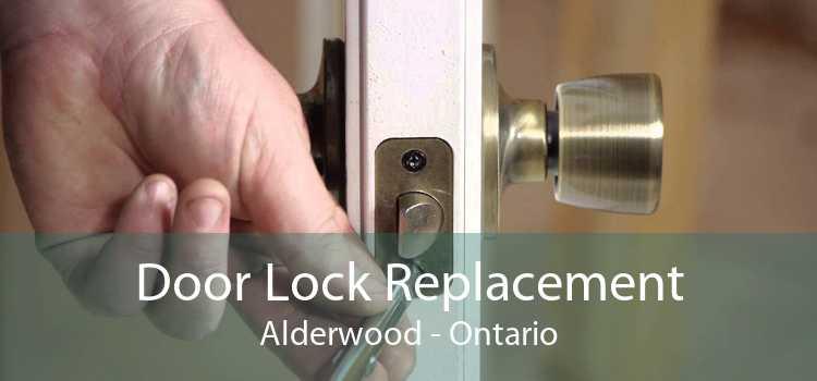 Door Lock Replacement Alderwood - Ontario