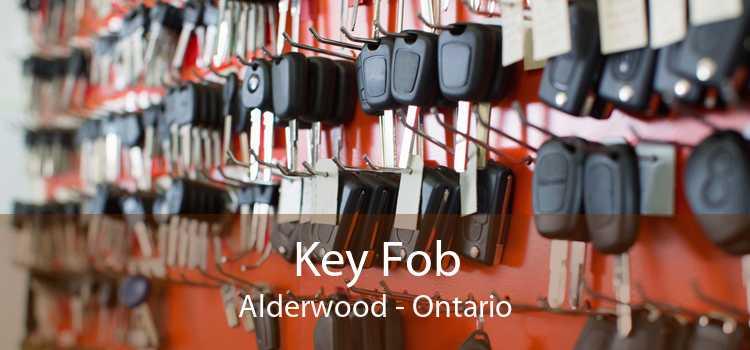 Key Fob Alderwood - Ontario