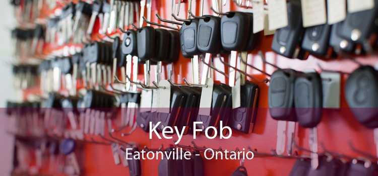Key Fob Eatonville - Ontario