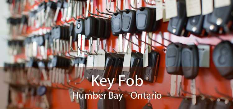 Key Fob Humber Bay - Ontario