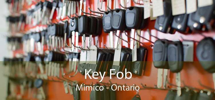 Key Fob Mimico - Ontario
