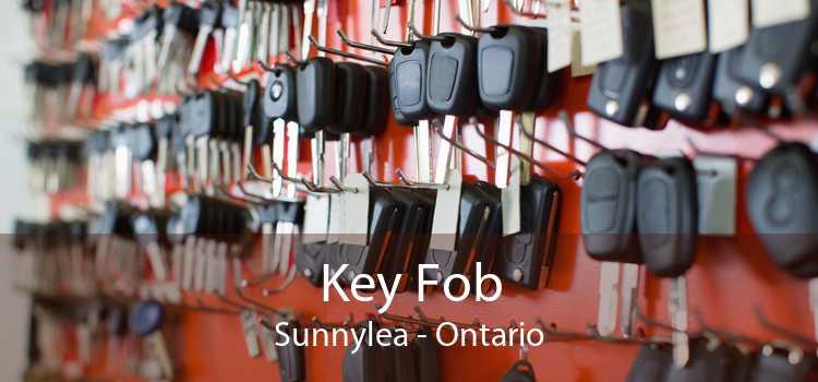 Key Fob Sunnylea - Ontario