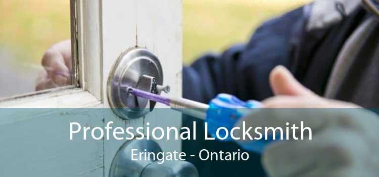 Professional Locksmith Eringate - Ontario