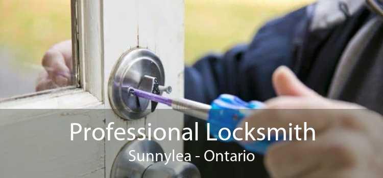 Professional Locksmith Sunnylea - Ontario