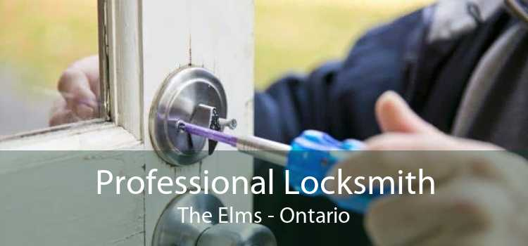 Professional Locksmith The Elms - Ontario