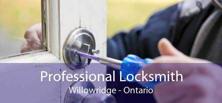 Professional Locksmith Willowridge - Ontario