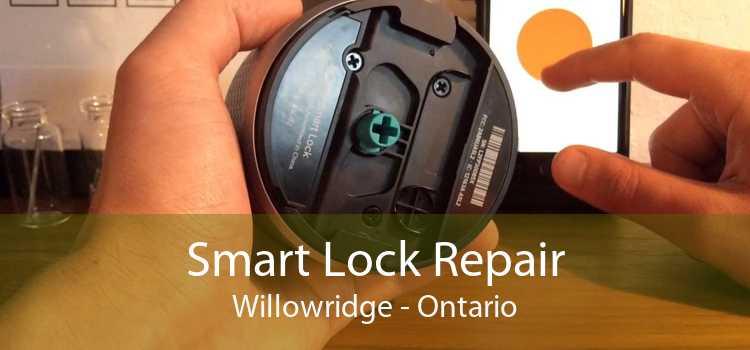 Smart Lock Repair Willowridge - Ontario